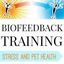Stress and Pet Health - USB Flashdrive