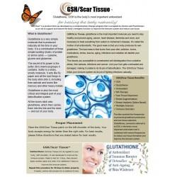 GSH(Glutathione)/Scar Tissue - BioEnergy Patch (10 Pack)