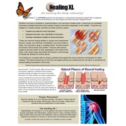 Healing XL - BioEnergy Patch (10 Pack)