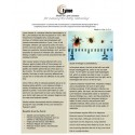 Lyme - BioEnergy Patch (10 Pack)