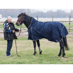 Horse Harness (Halter) and Blanket