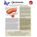 Mito-Cell Restoration - BioEnergy Patch (10 Pack)