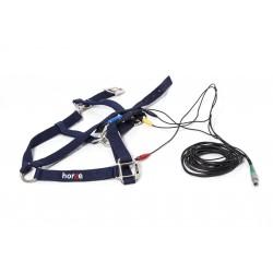 Mandelay Horse Harness (Halter) - SCIO