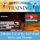 Effective Use of the NLP Panel - Stress and Trauma - Online Access