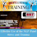 Effective Use of the NLP Panel - Stress and Trauma - USB Flashdrive