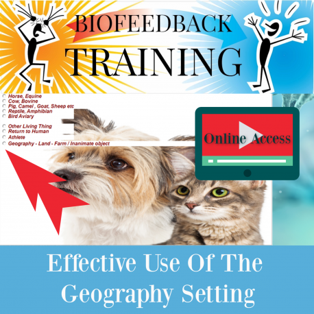 Effective Use of the Geography Setting - Online Access